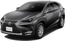LEXUS NX300 NEW MODEL
