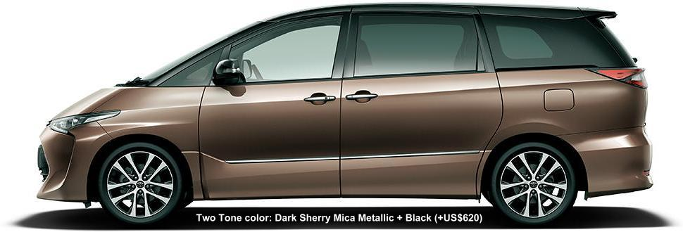 2 TONE COLOR: DARK SHERRY MICA METALLIC + BLACK (option color US$620)