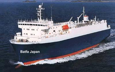 JAPAN SHIPPING SERVICE
